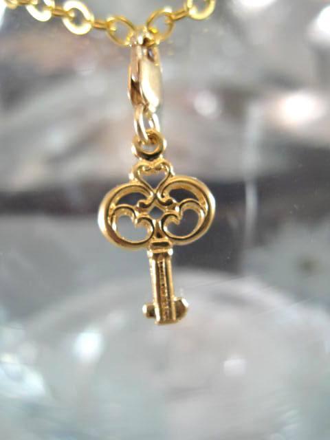 Guldberlock med karbinlås - Nyckel/14K GF