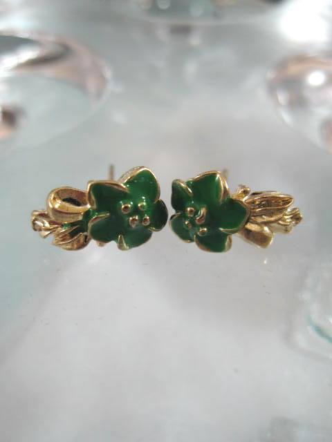 Bonus erbjudande 300 - Guldörhängen - Blomma/Grön