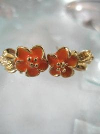 Bonus erbjudande 300 - Guldörhängen - Blomma/Orange